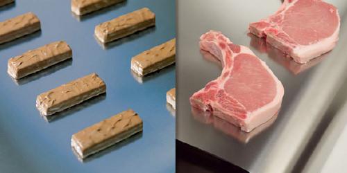 Stahlband in der Schokoladenproduktion - Stahlband in der Fleischverarbeitung